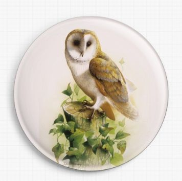 Barn Owl 2 By David Finney Licensed Art Needle Minder