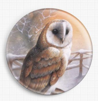 Barn Owl By David Finney Licensed Art Needle Minder