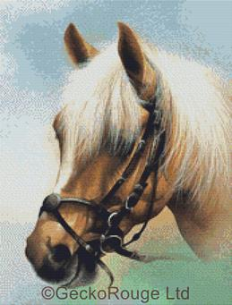 Palomino By David Finney Cross Stitch Kit